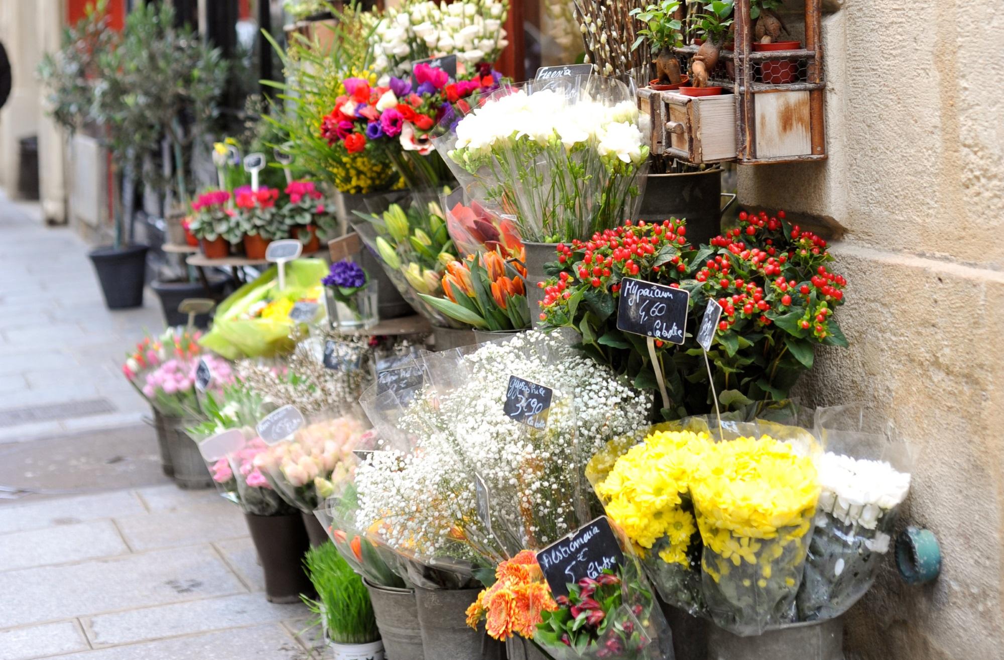 your complete guide to paris | information on paris