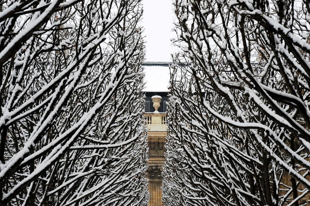 Palais Royal/ Meredith Mullins