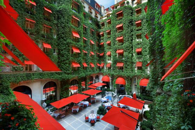 Le Cour Jardin/ Frederic Ducout