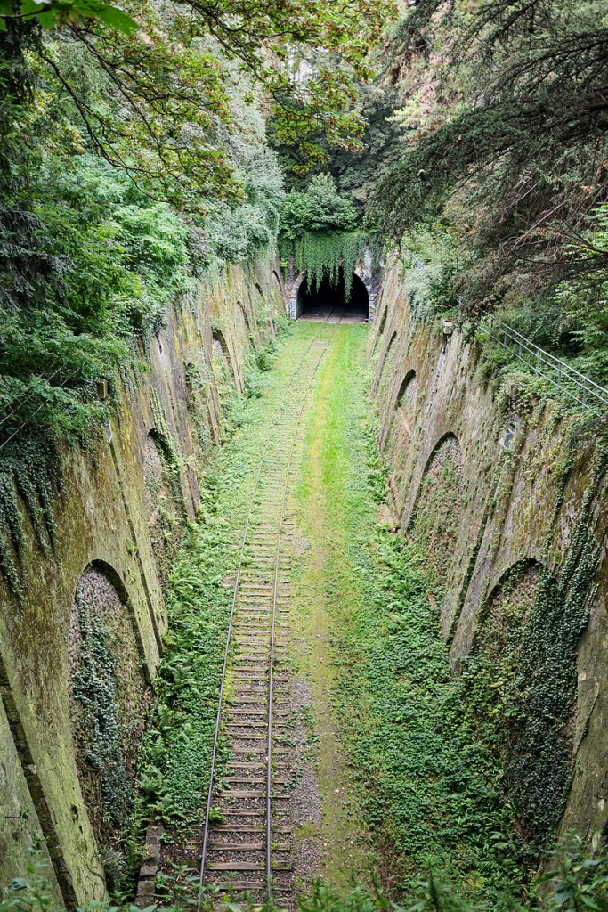 La Petite Ceinture in the Parc Montsouris