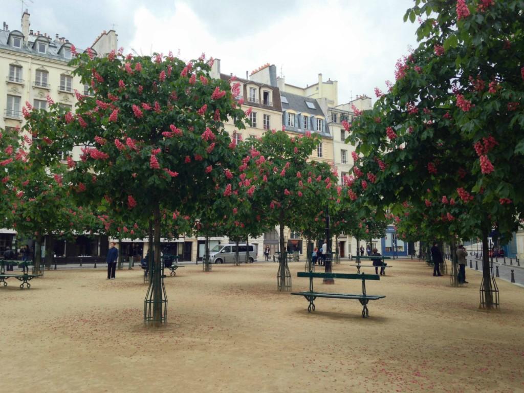 The Place Dauphine, Paris