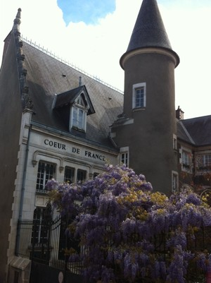 A French Dip: Learning French in a French Wine Town