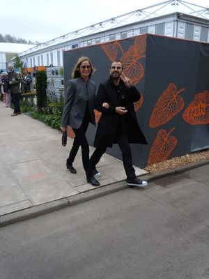 BUZZ:  Chelsea Flower Show, Le 110 De Taillevent & Rose De Mai