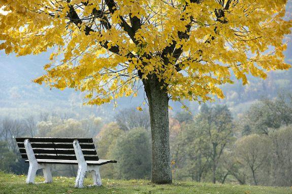 Autumn in Beaujolais by Photojournalist Clay McLachlan
