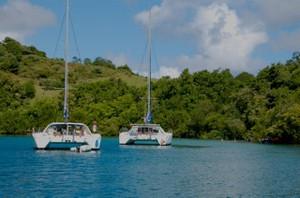 Discover Martinique … Flora, Fauna and Creole Flavor