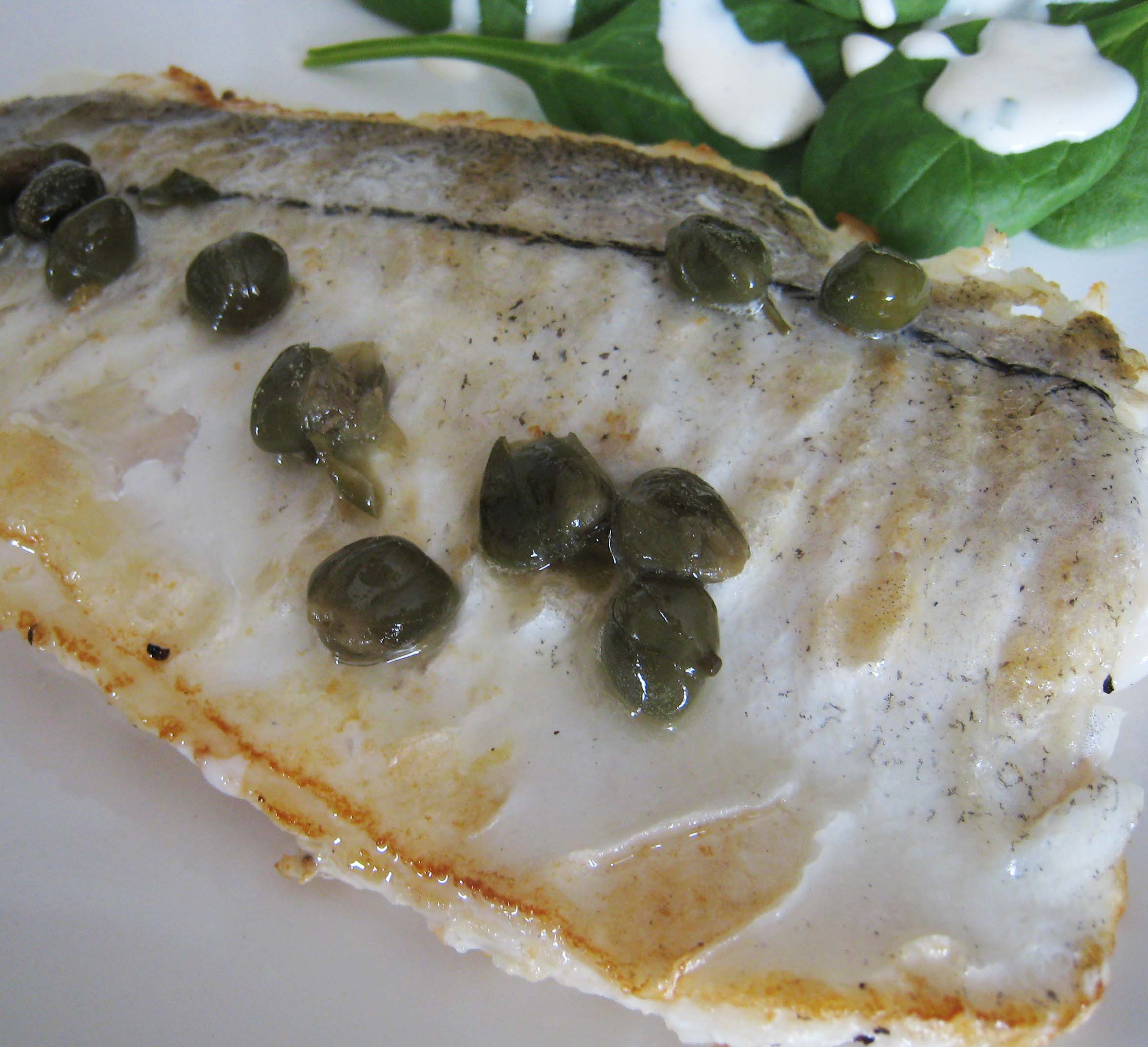 Recipe cod haddock or white fish in light sauce of for Lemon butter caper sauce for fish