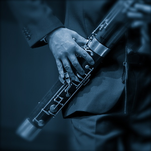 Blues for Bassoon