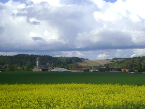 l'Aube en Champagne: Two Hours From Paris