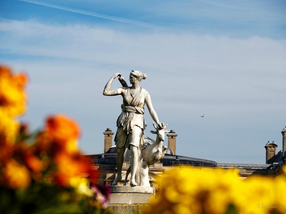 Favorite Running Spots in Paris: Le Jardin du Luxembourg