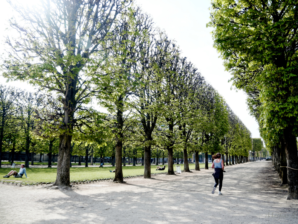 Favorite running spots in paris le jardin du luxembourg for Jardin luxemburgo
