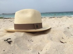 Ecua-Andino Panama Hats arrive in Paris