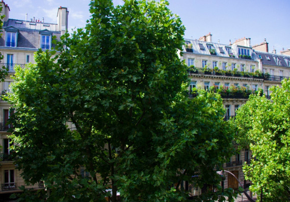 St Germain apartment for sale in Paris