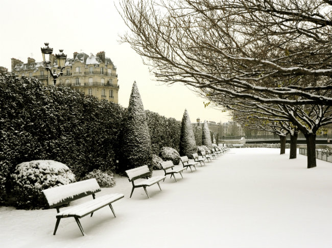 snow in a Paris garden