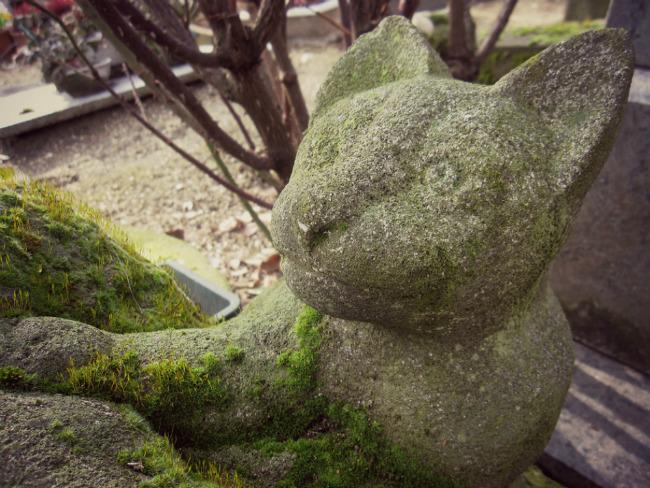 The Cat's Meow: Explore the Cimetière des Chiens, the World's Oldest Pet Cemetery