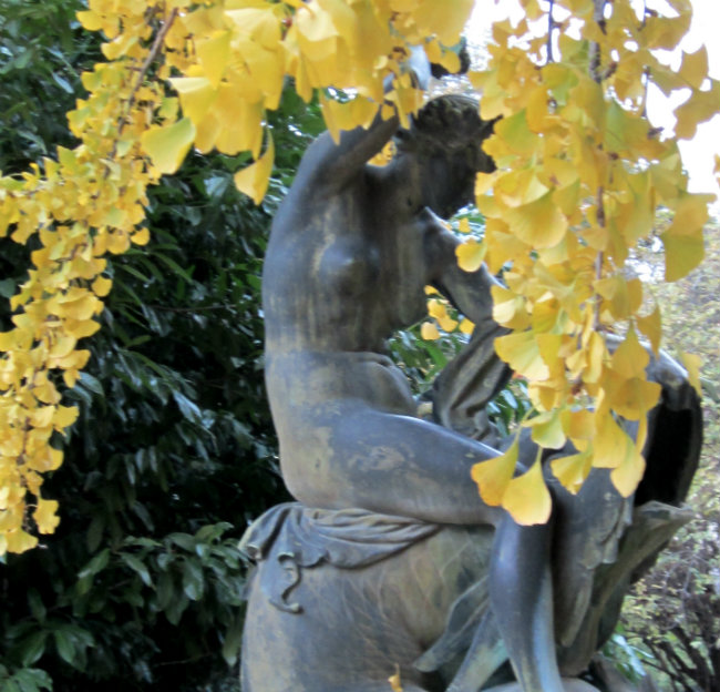 Fall foliage in the Jardin des Plante