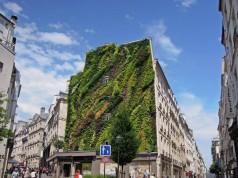 Mur Vegetal Patrick Blanc