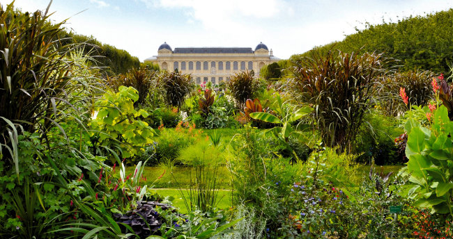 The Fabulous History of the Jardin des Plantes in Paris