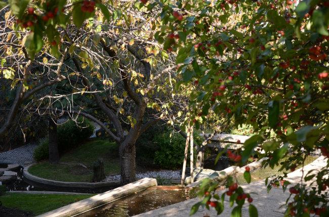 The peace gardens at UNESCO