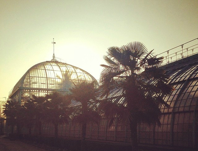 Sunrise over the greenhouses in Auteuil