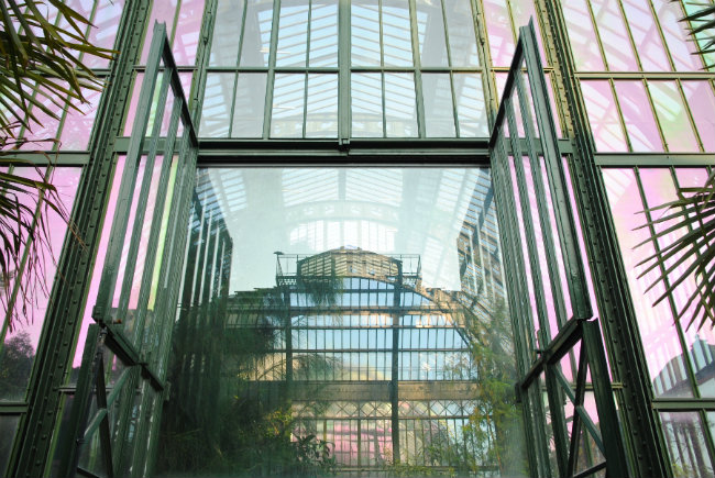 Photo Essay: The Grandfather Greenhouse Gardens of Paris