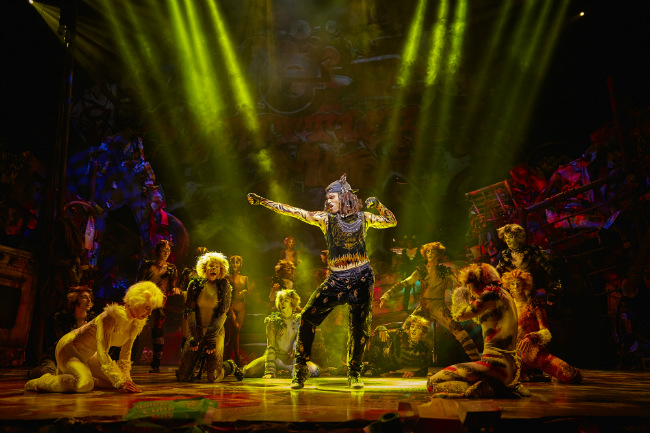 Rum Tum Tugger in Cats at the Mogador in Paris