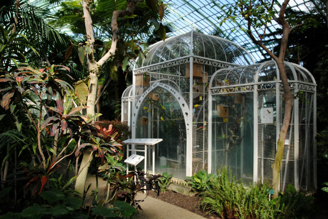 Auteuil greenhouses