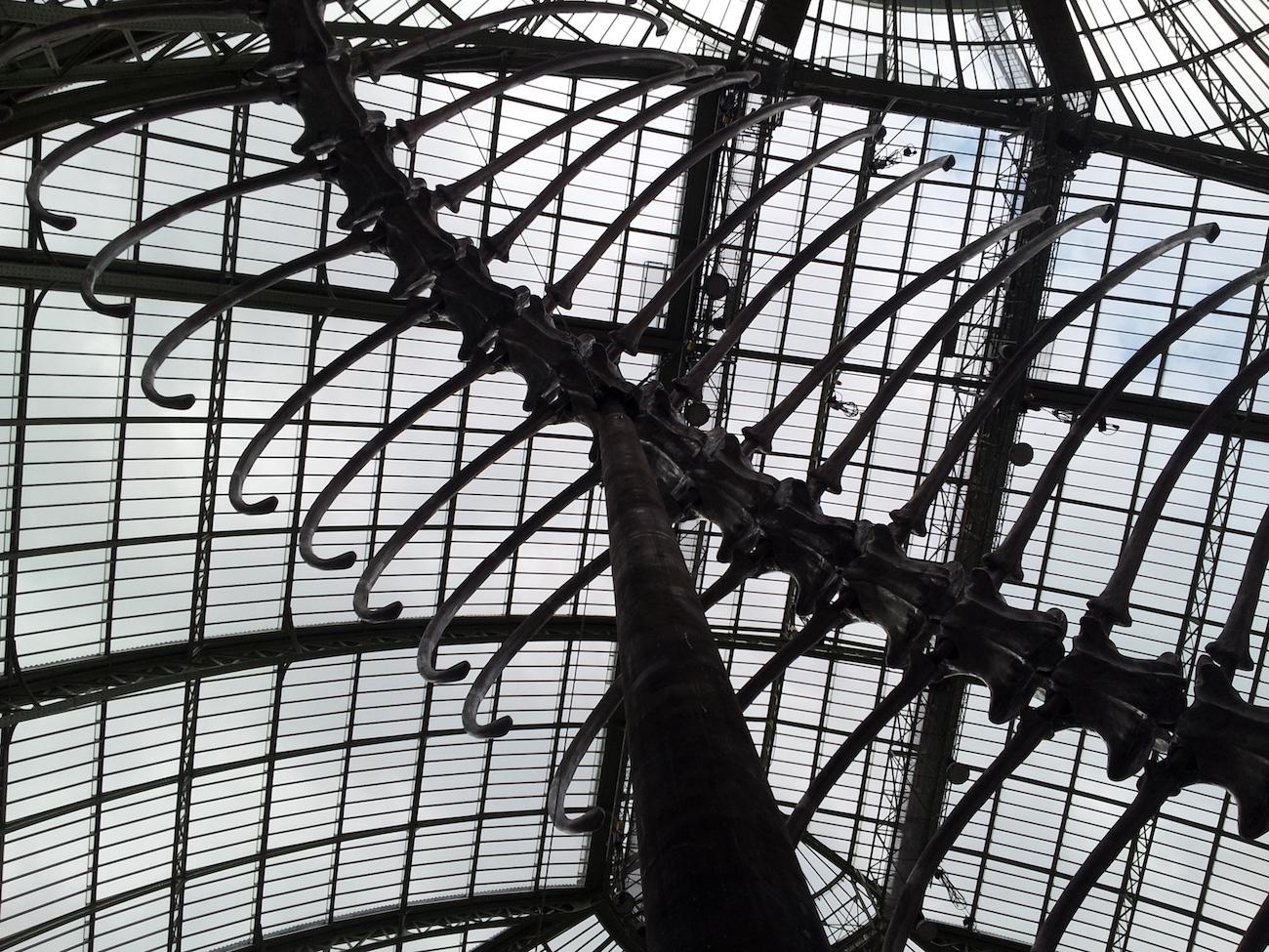 Monumenta 2016, Paris ©Electrohermit