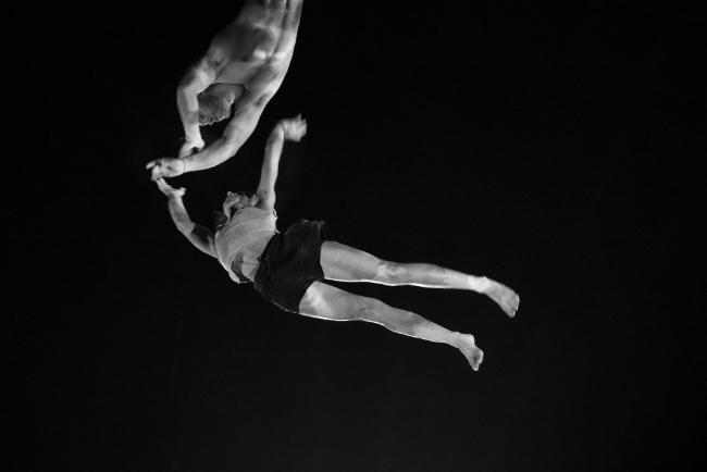 Vive Le Cirque! The Festival Mondial du Cirque de Demain