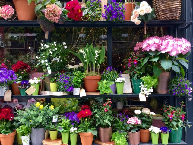 """Floral Boutiques: A Pretty Map to Illustrate Georgianna Lane's """"Paris in Bloom"""""""