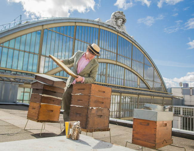 The Buzz in Paris: Rooftop Beehives, Honey and Urban Beekeeping