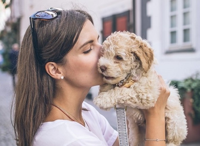 Paris is for Dog Lovers: The Ultimate Guide to Dog Friendly Paris