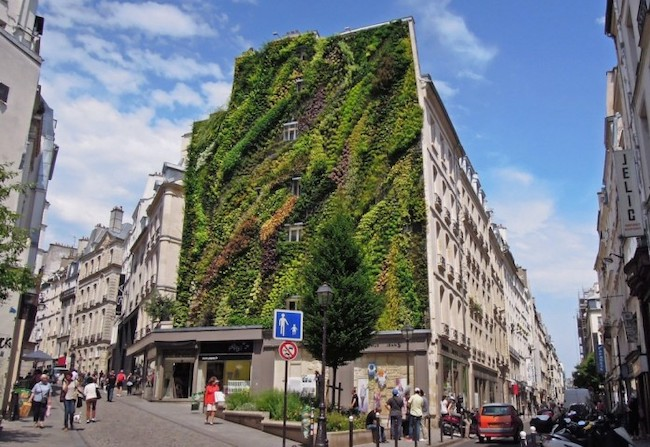 An Extraordinary Christmas Tree Inspired by Paris's Commitment to Sustainability