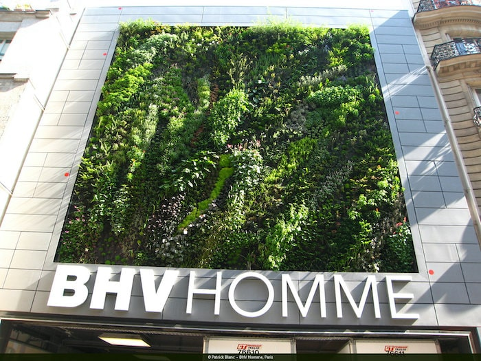 BHV Homme, Paris by Patrick Blanc