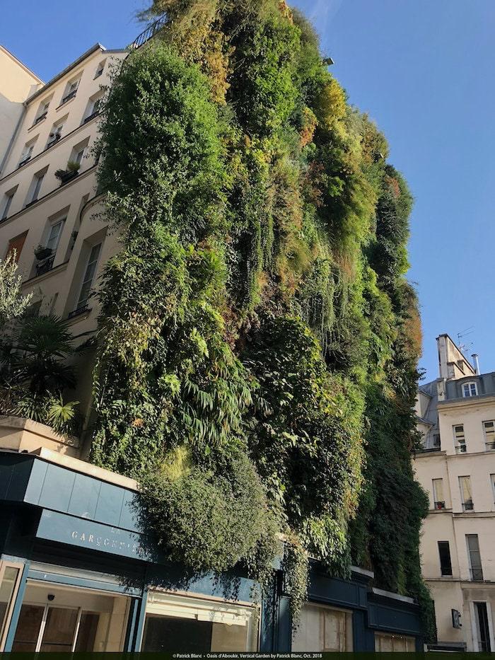 oasis-daboukir-vertical-garden-patrick-blanc