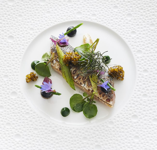The charred mackerel at L'Oiseau Blanc Restaurant