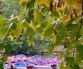 Bois de Vincennes / île de Bercy & île de Reuilly