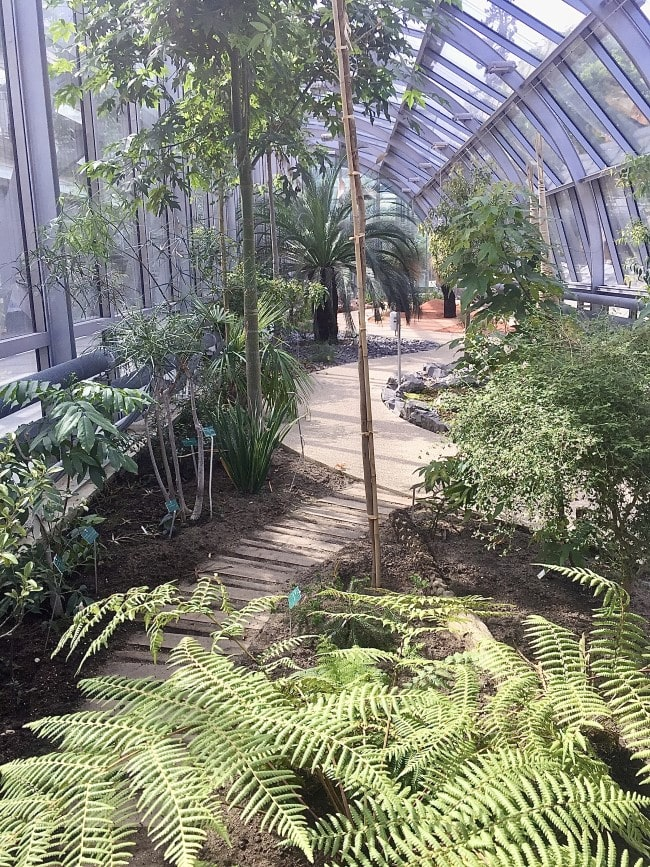 Tennis and Tropics: Roland Garros and the Auteuil Greenhouses