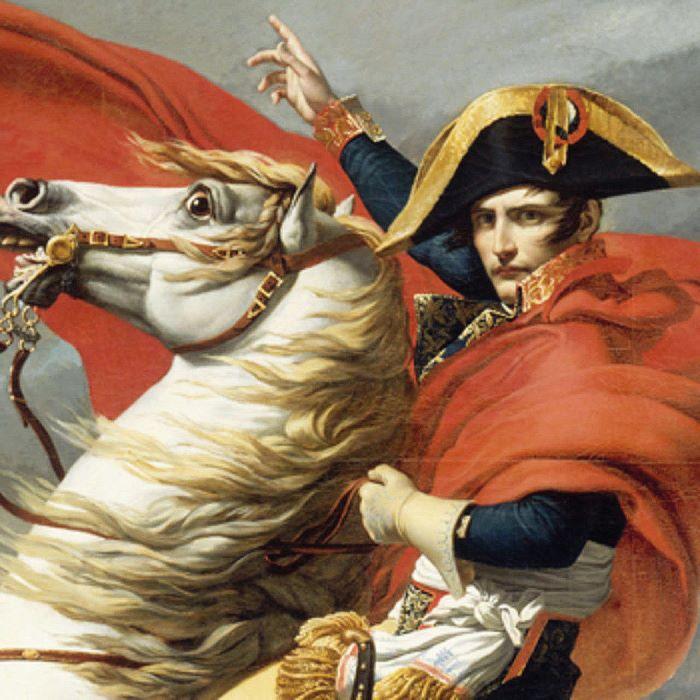Napoleon ©Expo Napoleon RMN Grand Palais La Villete