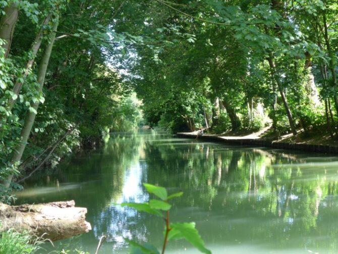 Discovering the Hidden Islands of Créteil