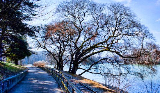 Lyon Parc de la Tête d'Or in winter. Photo: Bluemanta69