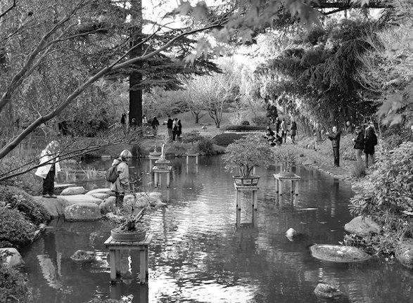 Visitors at the Japanese garden. Photo by atsirou.