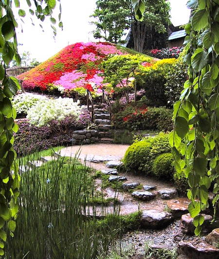 Garden at Albert Kahn before the Japanese pagoda. Photo by salix.