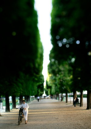 Le Jardin du Luxembourg. Photo by Clay McLachlan