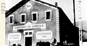 Vignolis Cooperative circa 1923  courtesy of Vignolis