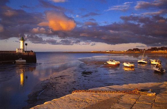 Île-de-Ré port. Photo by Yvon Merlier.